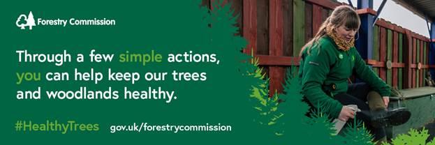 Tree health pilot scheme