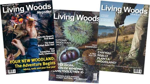 Living Woods moves online